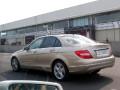 30039-C级(2011款)