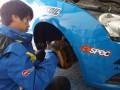 56235-新车评网赛车队征战GIC风云战6小时耐力赛实录