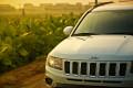 61619-《特驾游》——Jeep指南者南沙十九涌之行